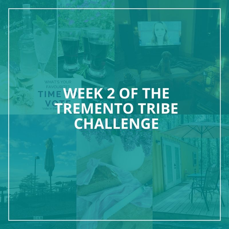 Week 2 of the Tremento Tribe Challenge