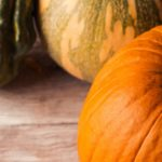 Autumn still life with different pumpkins