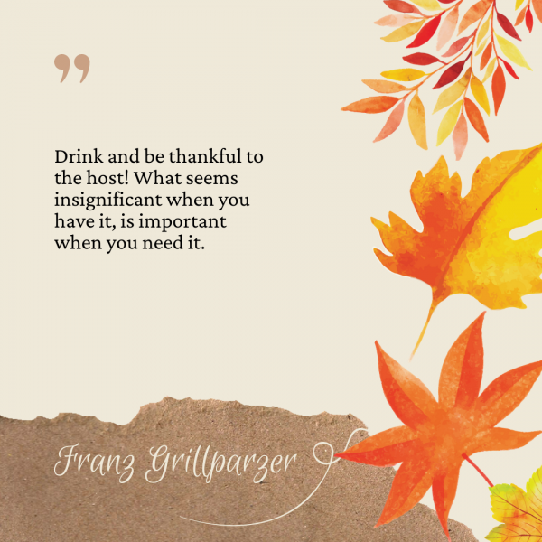 Thanksgiving Captions 4